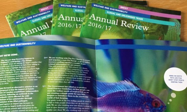 Read our latest Annual Report here