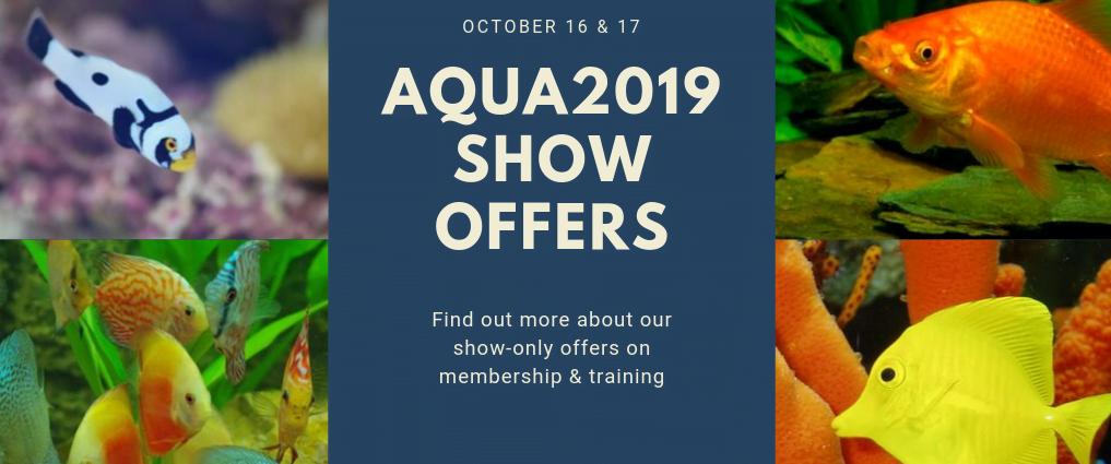 Special AQUA2019 show only offers!
