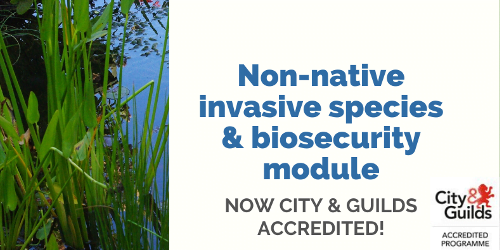 Invasive species training module now City & Guilds accredited