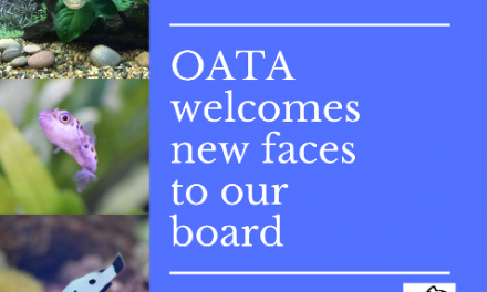 OATA AGM confirms Directors for the next year