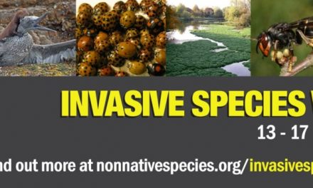 New training launched for Invasive Species Week