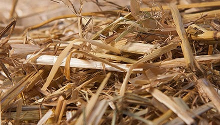 Chopped barley straw is not a biocide, confirms HSE