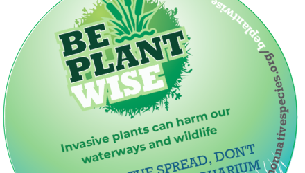 Be Plant Wise & help spread the message