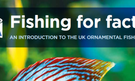 New Fishing For Facts report lands with UK politicians