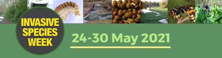 OATA supports Invasive Species Week 2021