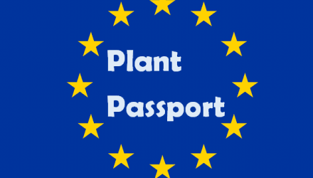 New plant passport requirements from December