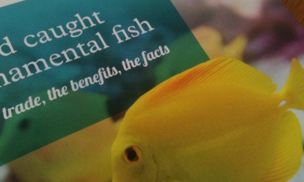 Wild caught report makes award shortlist