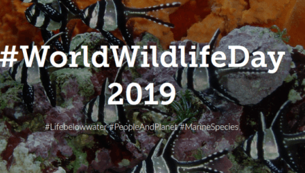 World Wildlife Day – 3 March 2019